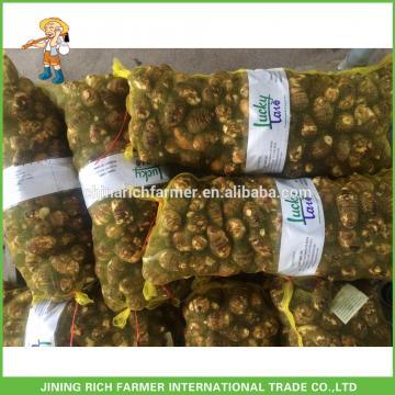 2017 Latest Natural Vegetation Big Fresh Taro For Sale