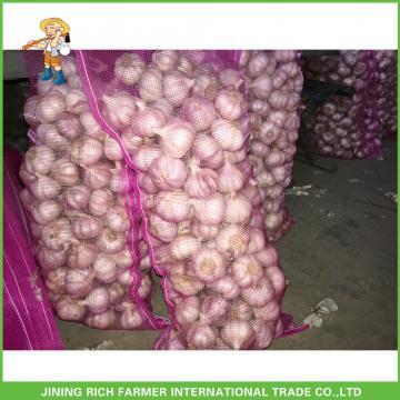Fresh Normal White Garlic In10kg Carton 5.5 CM For Brazil High Quality Cheapest Price