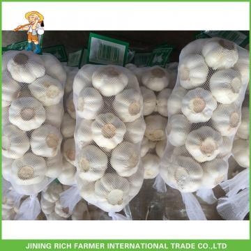 Cheapest Price High Quality Fresh Red White Garlic Mesh Bag In 10KG Carton