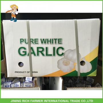 Cheapest Price High Quality Fresh Super White Garlic Mesh Bag In Carton