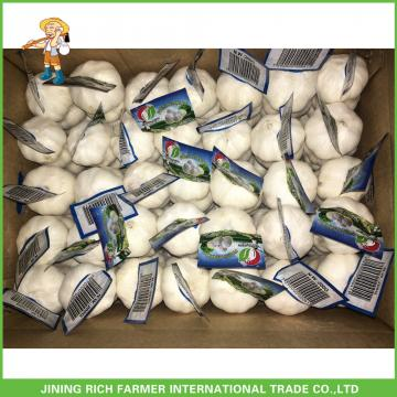 Jinxiang China Fresh White Garlic High Quality Cheapest Price 5.0CM