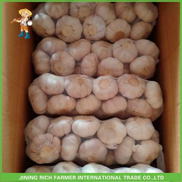 2017 Fresh Normal White Garlic 5.5CM In 10KG Carton For Brazil Cheapest Price High Quality