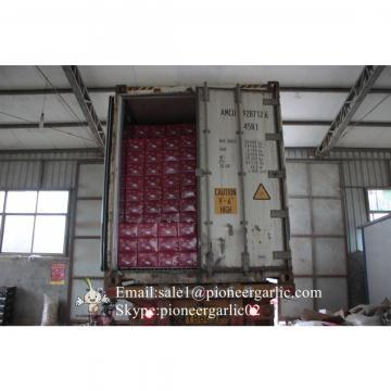 Hot Sale Chinese Fresh Normal White Garlic Natural Garlic Wholesale for Senegal Market