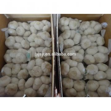 2017 chinese garlic good quality