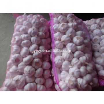new chinese natural fresh garlic