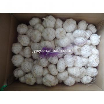 China 2017 Jinxiang Fresh Garlic,garlic Factory