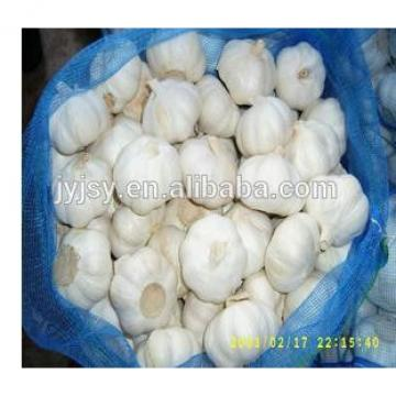 fresh garlic from china 2017