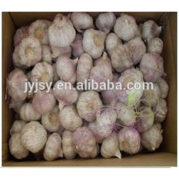 2017 garlic from jinxiang shandong China