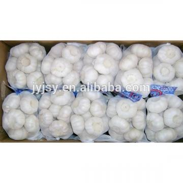 pure white garlic in 2017 china