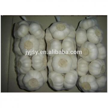 2017 fresh garlic from China jinxiang city