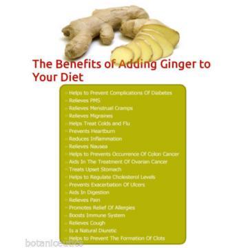 360 Ginger, Garlic & Turmeric Capsules - Circulatory Help, Antioxidant, 500 Mgs