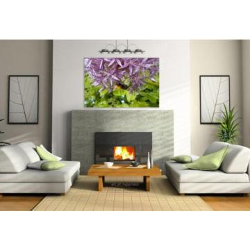 Stunning Poster Wall Art Decor Garlic Bourdon Flower Bee Macro 36x24 Inches