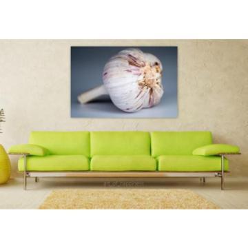 Stunning Poster Wall Art Decor Garlic Food Spices Taste Health 36x24 Inches