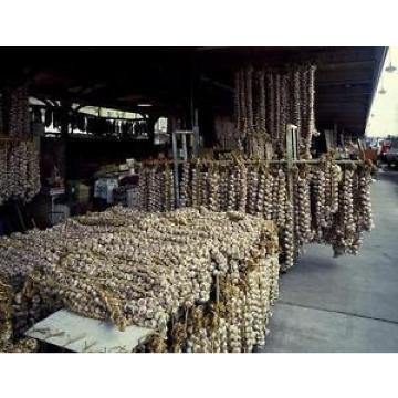 Photo of Garlic Strings at French Quarter Market,New Orleans,Louisiana,LA