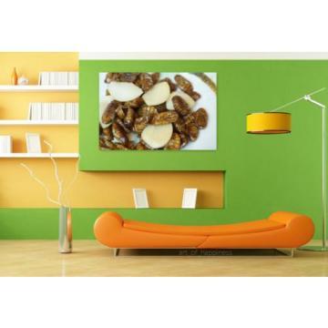 Stunning Poster Wall Art Decor Chrysalis Silkworm Garlic Chrysalis 36x24 Inches