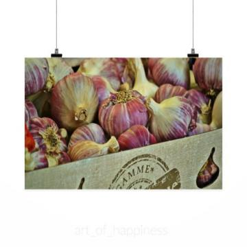 Stunning Poster Wall Art Decor Garlic Spice Food Herb 36x24 Inches