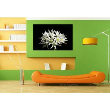 Stunning Poster Wall Art Decor Wild Garlic Flower Spring 36x24 Inches
