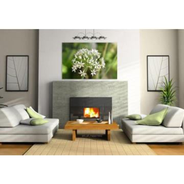 Stunning Poster Wall Art Decor Plant White Garlic Garden Nature 36x24 Inches