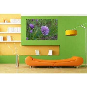 Stunning Poster Wall Art Decor Purple Flower Wild Garlic Flowers 36x24 Inches