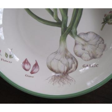 WILLIAMS SONOMA Culinary Herbs Large Ceramic Pasta Bowl Portugal 13 Inch Garlic