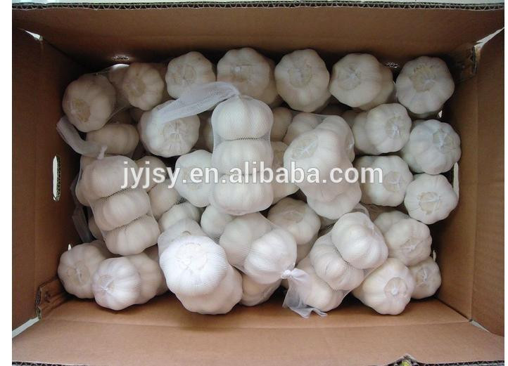 2017 year garlic from china