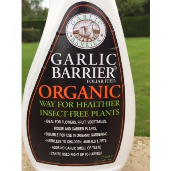 Organic Garlic Insecticide Deters Aphids Caterpillar Whitefly Slugs & Snails #2 image