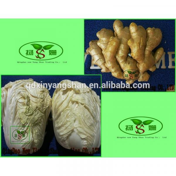(HOT) 2017 year china new crop garlic Purple  garlic  exporters   #3 image