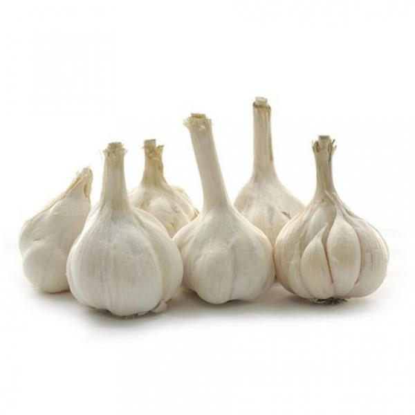 ISO 2017 year china new crop garlic Global  GAP  HACCP  KOSHER  JAS certification fresh garlic and ginger #3 image