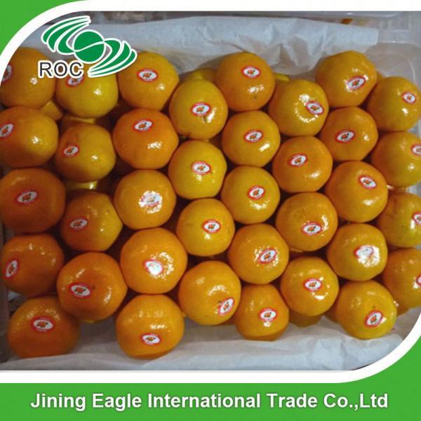 Sweet nanfeng fresh small honey mandarin orange #5 image