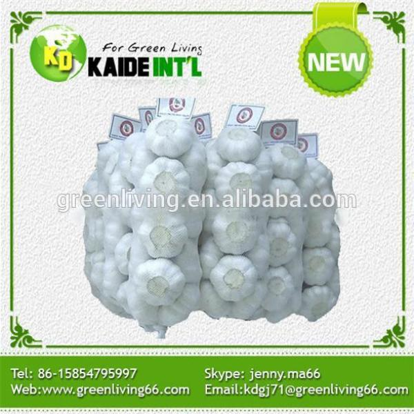 China Super White Garlic Exporter #1 image