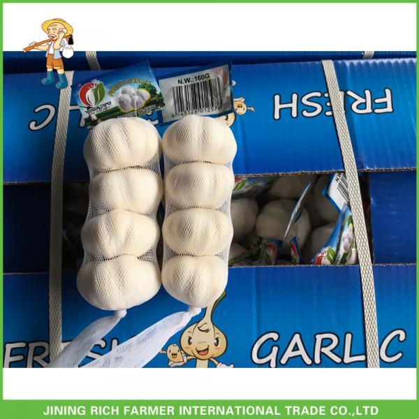 Jinxiang China Fresh White Garlic High Quality Cheapest Price 5.0CM #1 image