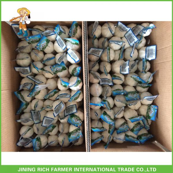 Jinxiang China Fresh White Garlic High Quality Cheapest Price 5.0CM #4 image