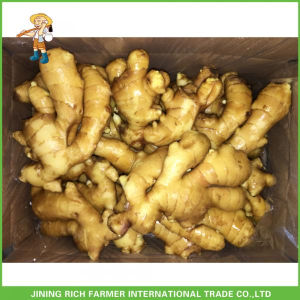 2017 Fresh Ginger And Garlic Price #1 image