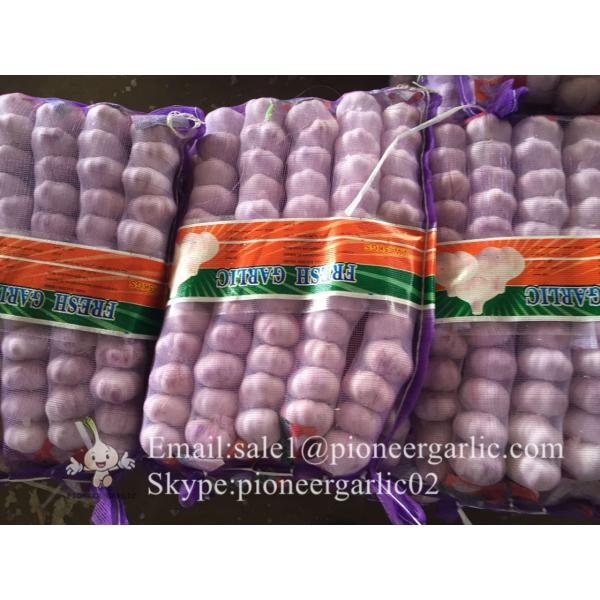 New Crop Fresh Jinxiang Normal White Garlic 5cm And Up In Mesh Bag Packing #2 image