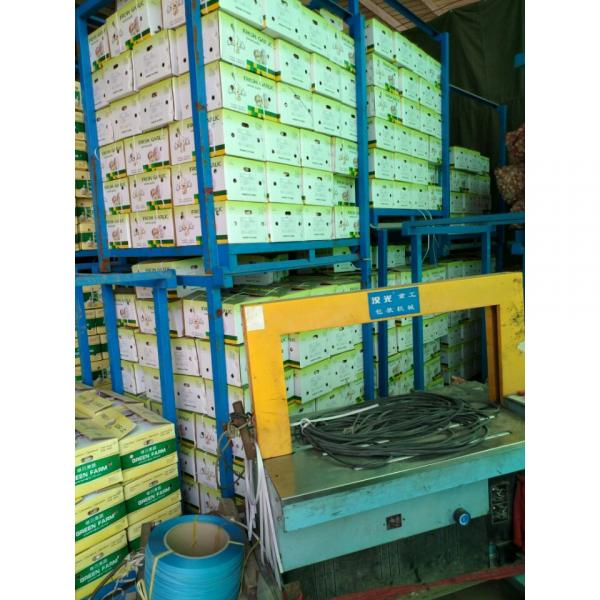 CHINA GARLIC ARE EXPORTED TO BRAASIL MARKET (GOODFARMER) #2 image