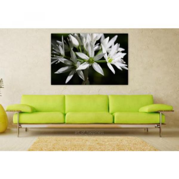 Stunning Poster Wall Art Decor Bear S Garlic Allium Ursinum 36x24 Inches #1 image