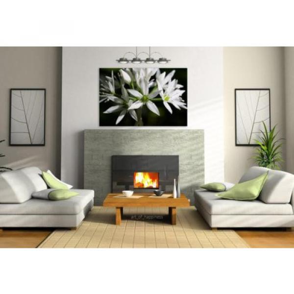 Stunning Poster Wall Art Decor Bear S Garlic Allium Ursinum 36x24 Inches #3 image