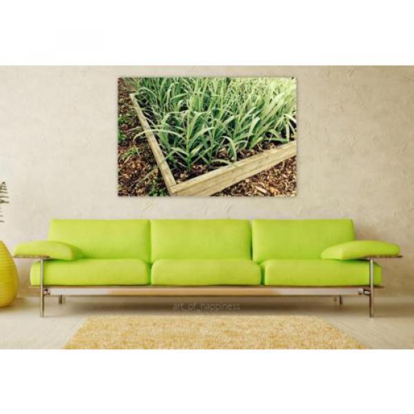 Stunning Poster Wall Art Decor Garlic Garden Gardening Plant Box 36x24 Inches #1 image
