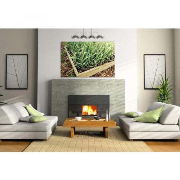 Stunning Poster Wall Art Decor Garlic Garden Gardening Plant Box 36x24 Inches #3 image