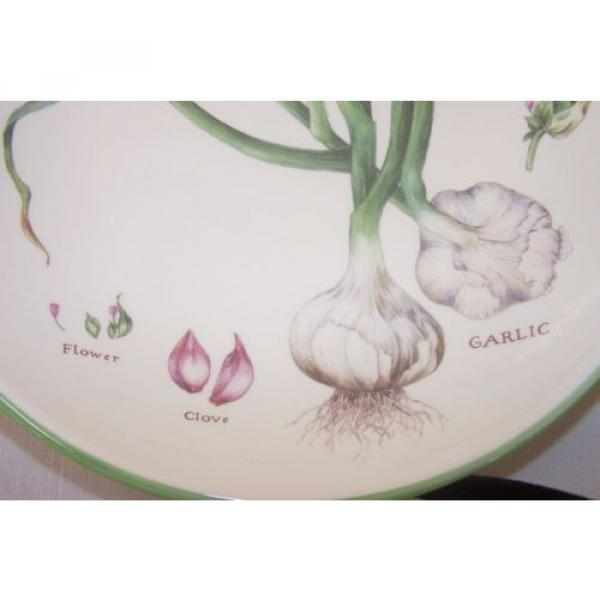 "Williams Sonoma pasta serving bowl 13"" Culinary Herbs Flower Clove Garlic #2 image"