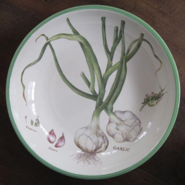 WILLIAMS SONOMA Culinary Herbs Large Ceramic Pasta Bowl Portugal 13 Inch Garlic #1 image
