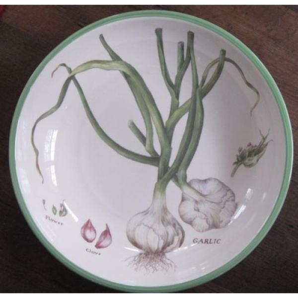 WILLIAMS SONOMA Culinary Herbs Large Ceramic Pasta Bowl Portugal 13 Inch Garlic #5 image